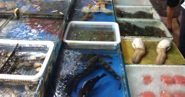 Le-marché-aux-poissons-et-fruits-de-mer-de-Shanghai
