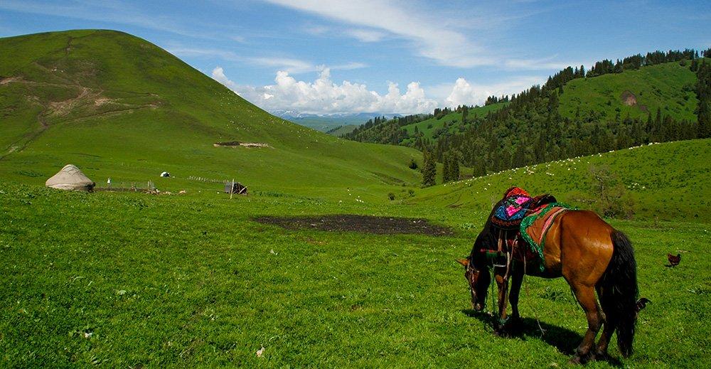 Les-cowboys-tibetains_partie2-2