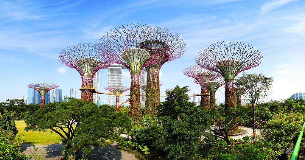 Singapour destination florissante