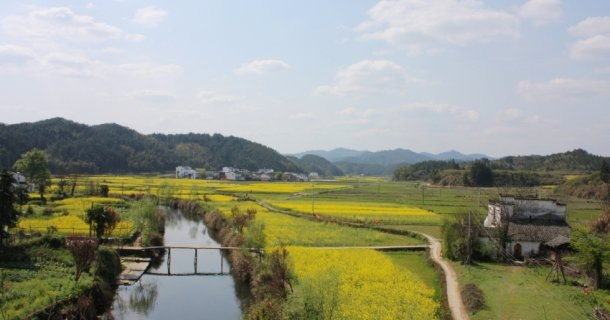 Balades dans le Wuyuan